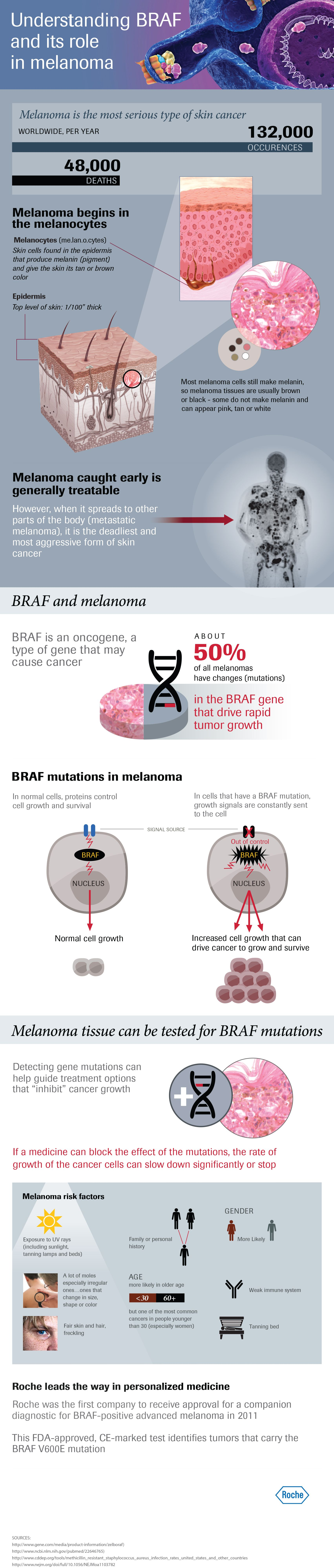 Infographic - Understanding BRAF and its role in melanoma
